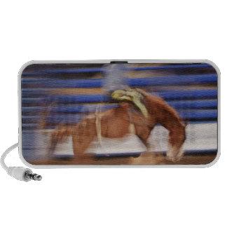 Montar a caballo del caballo salvaje sistema altavoz