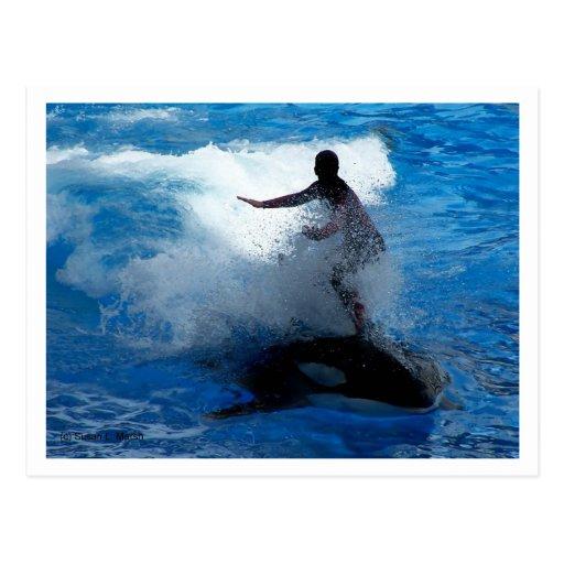 Montar a caballo del instructor en la fotografía d tarjetas postales
