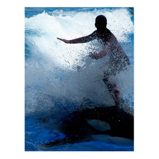 Montar a caballo del instructor en la fotografía tarjetas postales