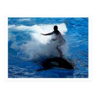Montar a caballo del instructor en la fotografía tarjeta postal