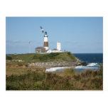MONTAUK Lighthouse Seagull Love Postcard