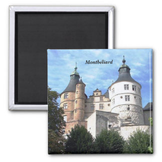 Montb�liard - 2 inch square magnet