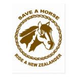 Monte a un New Zealander Postales