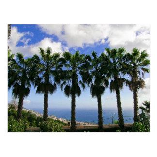 Monte Tropical Garden Madeira Postcard