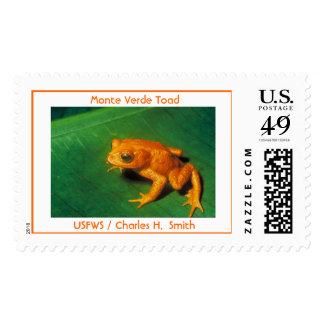 Monte Verde Toad Postage