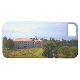 Montecassino, uvas crecientes para el vino iPhone 5 fundas
