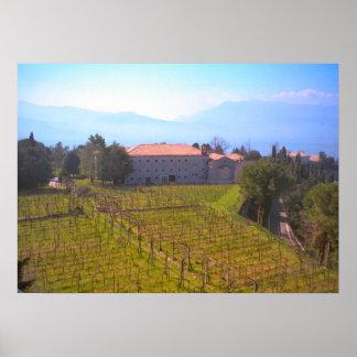Montecassino Vineyard for the monastery Print