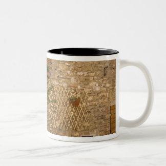 Montefollonico, Val d'Orcia, Siena province, Two-Tone Coffee Mug