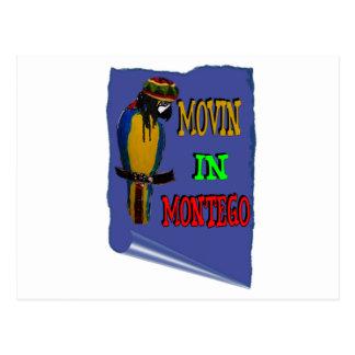 Montego Postcard