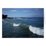 Monterey Bay, California Greeting Cards