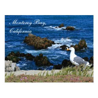 Monterey Bay California Postcard