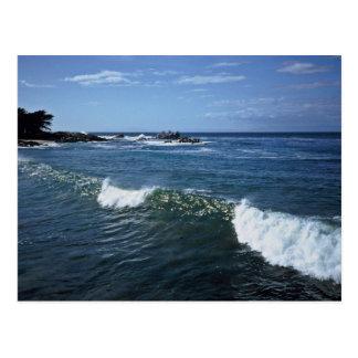 Monterey Bay California Postcards