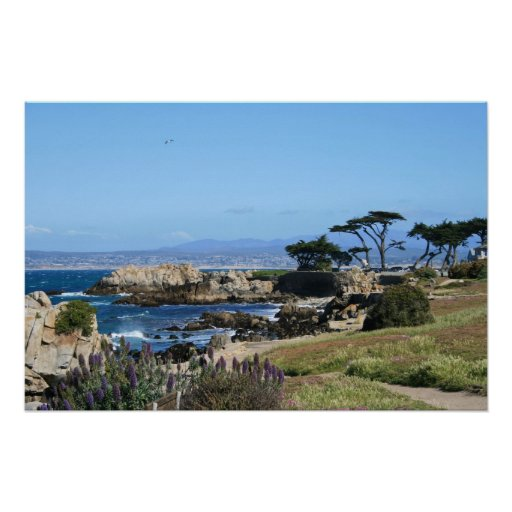 Monterey Bay Coastline, Spring Photo Print