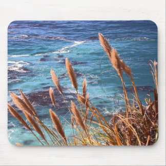 Monterey Bay Mouse Pad