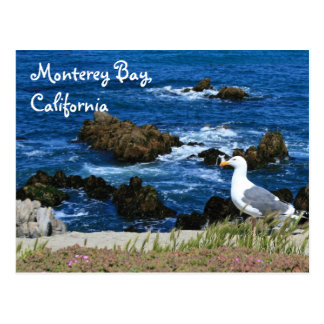 Monterey Bay, Postcard