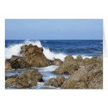 Monterey, CA Tarjeta Pequeña