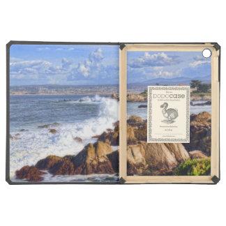 Monterey California Scenic Coast iPad Air Cases