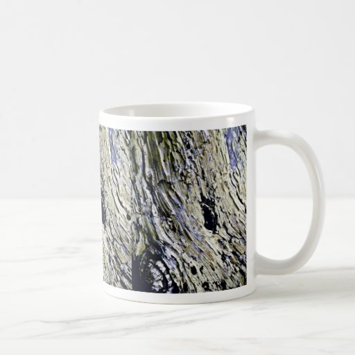 Monterey Cypress Bark Classic White Coffee Mug