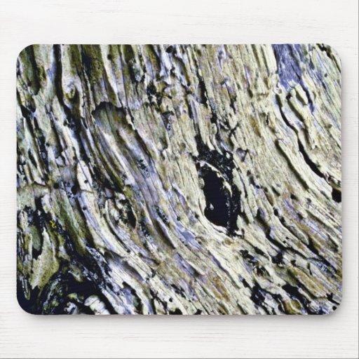 Monterey Cypress Bark Mouse Pad