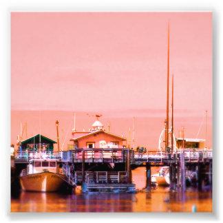 Monterey Fotografía