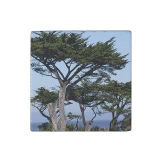 Monterey Stone Magnet