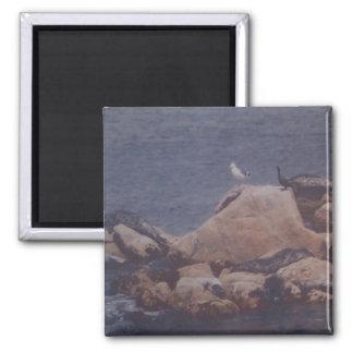 Monterey Sun Bath Magnet
