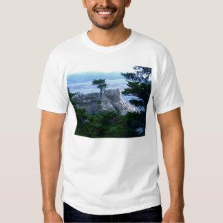 Monterey tree tee shirt