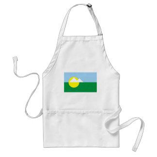 Montesclaros Minasgerais bandera del Brasil, el Br Delantal