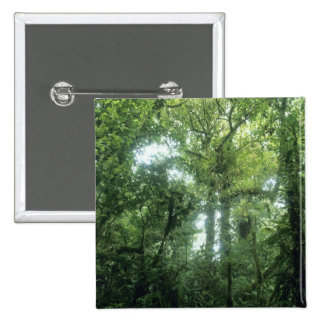 Monteverde Cloud Forest, Costa Rica. 2 Inch Square Button