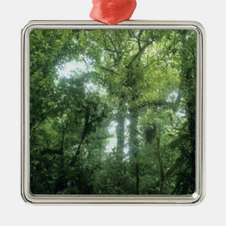Monteverde Cloud Forest, Costa Rica. Metal Ornament