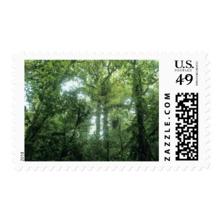 Monteverde Cloud Forest Costa Rica Postage Stamps