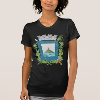 Montevideo Coat Of Arms T-shirt