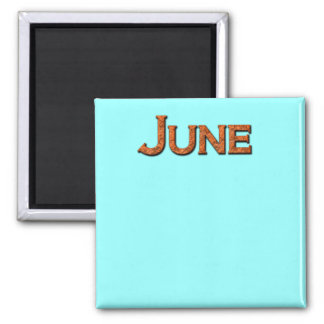 Month of June Teaching or Memory Aid Magnet