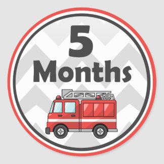 Monthly Milestone Stickers - Baby Month to Month