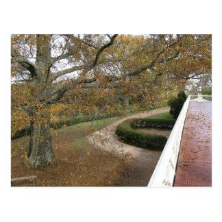 Monticello in the Fall Postcard