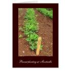 Monticello's Vegetable Gardens Card