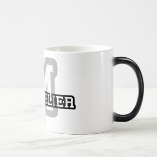Montpelier Magic Mug