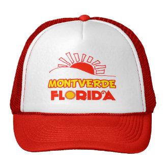 Montverde, la Florida Gorros