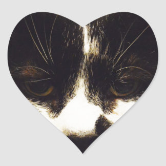 Monty Black and White cat Heart Sticker