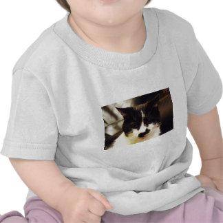 Monty Black and White cat Tee Shirts