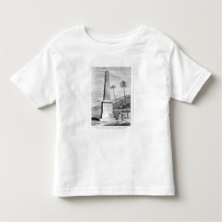 Monument to Captain James Cook Toddler T-shirt