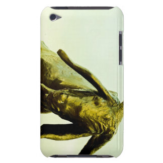Monument to the bull. barely there iPod cover