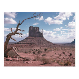 Monument Valley 9 Postcard