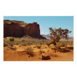 Monument Valley National Park Posters