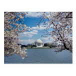 Monumento de Thomas Jefferson con las flores de ce