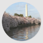 Monumento de Washington de la flor de cerezo Etiquetas
