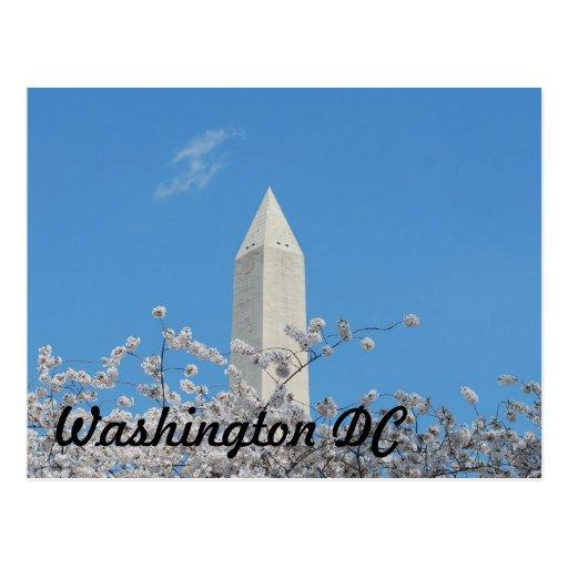 Monumento de Washington en primavera Tarjetas Postales