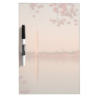 Monumento de Washington Sakura en la puesta del so Pizarras Blancas