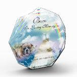 Monumento divino del perro casero del arco iris