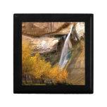 Monumento magnífico Utah de Escalante del becerro  Joyero Cuadrado Pequeño